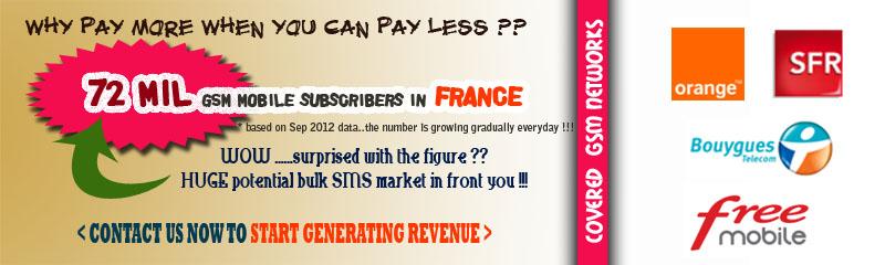 Bulk SMS France, Bulk SMS Provider France, Mobile Messaging France
